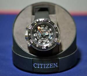 Citizen Eco Smart Dive Watch