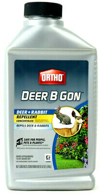 Deer Repellent Concentrate - ORTHO Deer B Gon Deer & Rabbit Repellent Concentrate Covers 10,000 Sq. Ft. 32 OZ