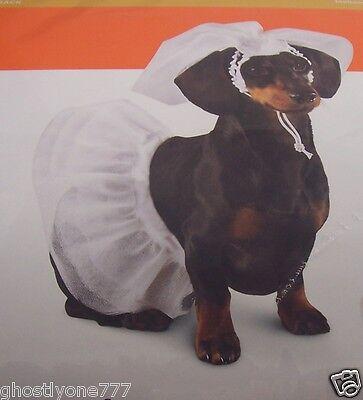 Dog Wedding Outfits (wedding bride veil cute doggy dog pet costume outfit dress skirt)