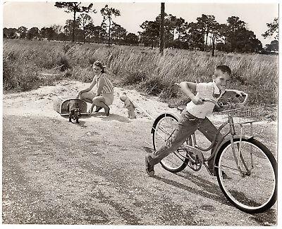 DACHSHUND DERBY TRAINING Dackel Sausage Dog Teckel * US Press Photo 1961