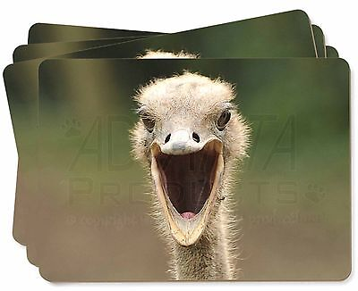 Ostritch Photo Print Picture Placemats in Gift Box, AB-OS1P