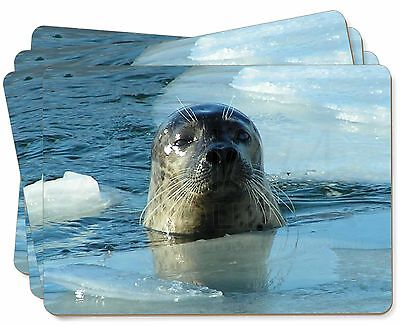 Sea Lion in Ice Water Picture Placemats in Gift Box, AF-S2P