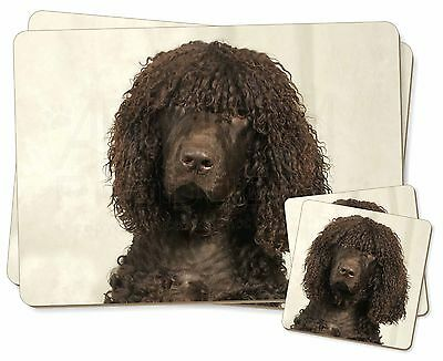 Irish Water Spaniel Dog Twin 2x Placemats+2x Coasters Set in Gift Box, AD-IWSPC