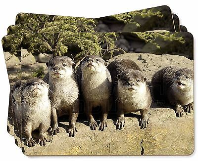 Cute Otters Picture Placemats in Gift Box, AO-6P