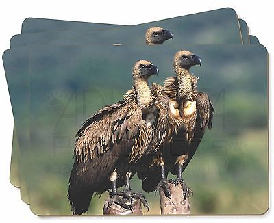 Vultures on Watch Picture Placemats in Gift Box, AB-92P