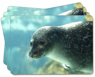 Sea Lion Picture Placemats in Gift Box, AF-S1P