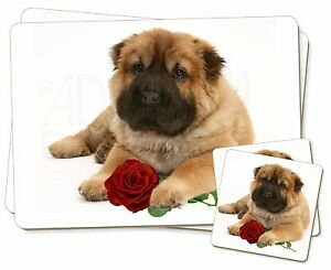 Shar-Pei-perro-con-rosa-roja-individual-2x-Manteles-2x-Posavasos-Set-en