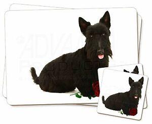 Terrier-Escoces-con-rosa-roja-Individual-2x-Manteles-individuales-2x