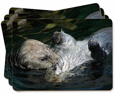 Floating Otter Picture Placemats in Gift Box, AO-3P