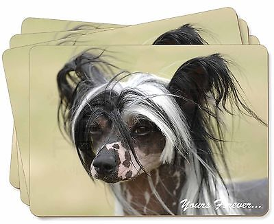 """Chinese Crested Dog """"Yours Forever..."""" Picture Placemats in Gift Box, AD-CHC2yP"""