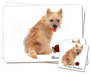 Cairn-Terrier-Rosa-039-Love-You-Mum-039-Individual-2x-Manteles-2x-Posavasos-SE