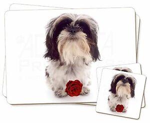 Lindo-Shih-Tzu-perro-con-Rosa-Doble-2x-Manteles-individuales-2x-Posavasos