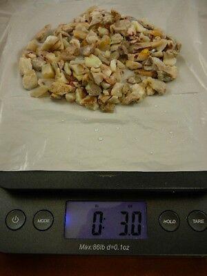 Used, (O-290-1) 3 oz blue red green Coober Pedy opal chips specimen stone Australia for sale  Spartanburg