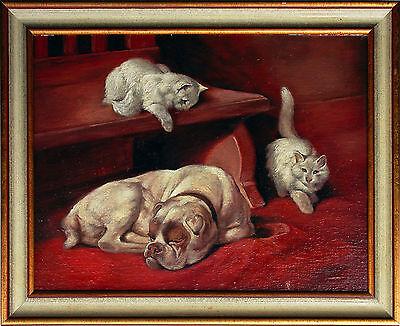 Hund Amerikanische Bulldogge Katzen Öl 30 x 40 cm Tiermaler um 1900/1920er Jahre