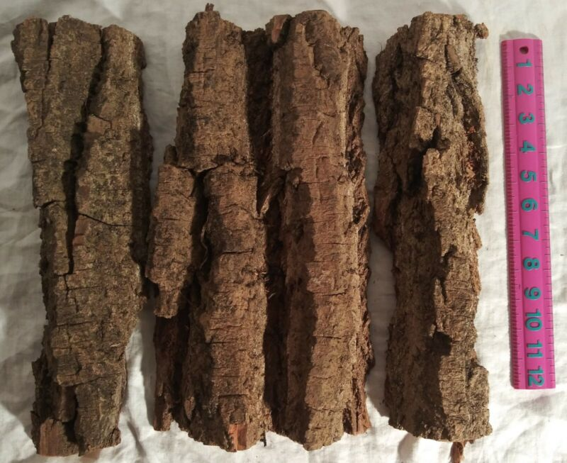 """3.13 lbs - 1 3/4"""" to 2""""  COTTONWOOD BARK CARVING Whittling Crafts"""