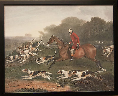 (T Goosey Huntsman to the Belvoir Hounds, R Davies, 20''x16'' frame hunting print)