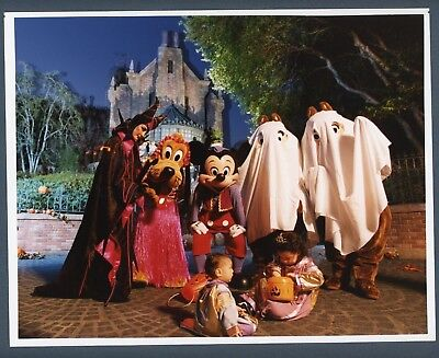 Glossy Disney World Press Photo Mickey Mouse Halloween Fright Night Ghosts](Disney World Halloween Photos)