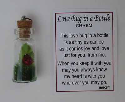 f LOVE BUG in a bottle LADYBUG Charm pendant miniature good - Love Bug Ladybug