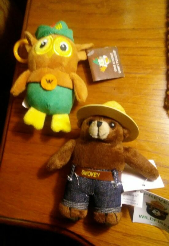 Woodsy Owl and a  Smokey Bear key chain.SOLD TOGETHER. One price.
