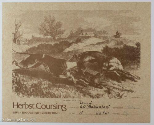 Rare Vintage Dog Coursing Certificate Print, German Ingolstadt Zuchering, Nice!