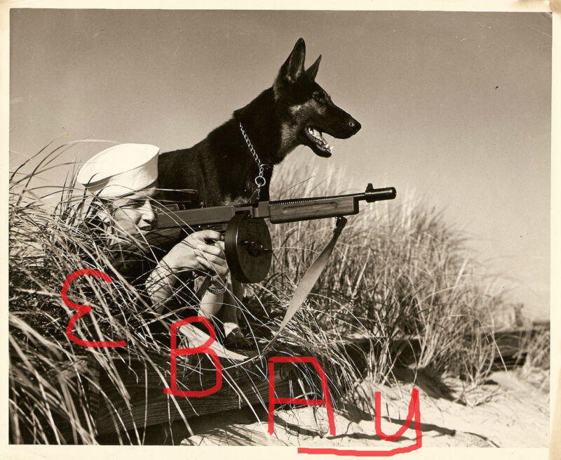 WWII ACTION PHOTO 8X10 USCG SHORE PATROL WITH GERMAN SHEPHERD 1944-45 LOOK # 4