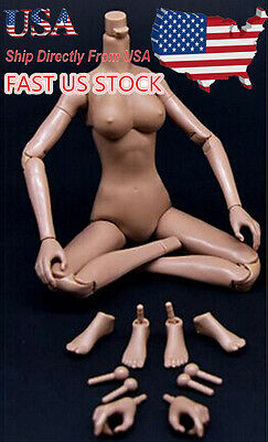 1 6 Female Medium Bust Nude Body Dark Color Figure Sit Fit Girl Kumik Head Model
