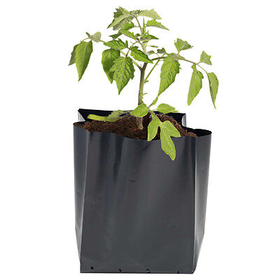 200 X 17lt Black Polythene Poly Pots/Potato Bags/pots