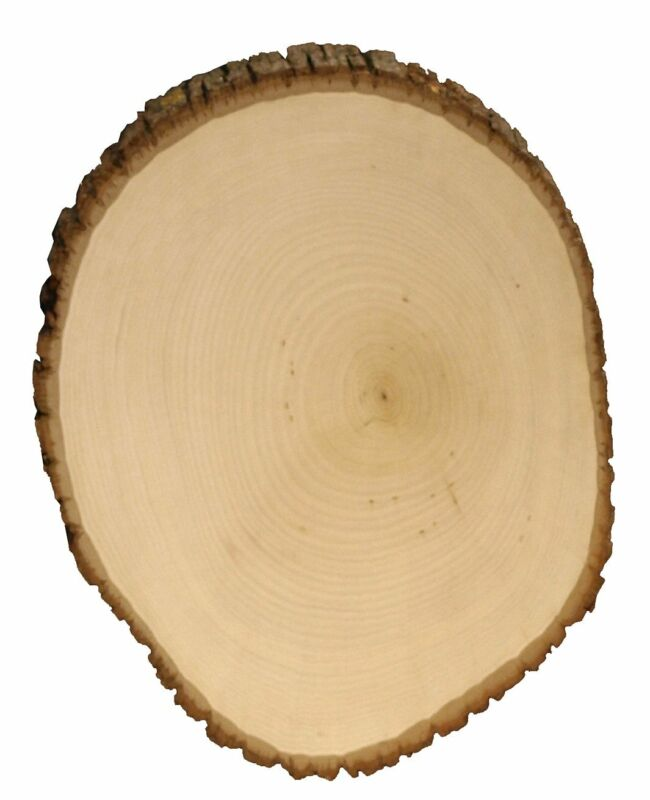 Walnut Hollow Basswood Country Round, Extra Large For Woodbu