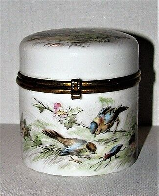 Antique French Porcelain Vanity Trinket Box Gilt Brass Mounts Birds Insects