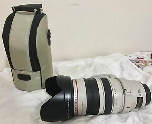 Canon EF 28-300mm f/3.5-5.6L IS USM Lens Summer Hill Ashfield Area Preview