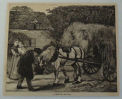 1882 magazine engraving ~ HORSE PULLING WAGON OF HAY & DRINKING WATER