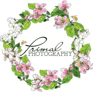 Primal Photography Nelson Bay Port Stephens Area Preview