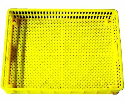 Rite Farm Products Hatcher Basket Egg Tray For Our Cabinet Incubators Chicken