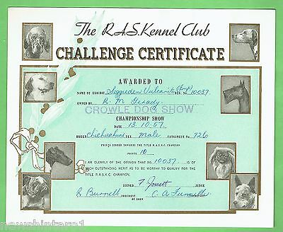 #T41. #18. 1957  RAS KENNEL CLUB DOG CHALLENGE CERTIFICATE, CHIHUAHUA