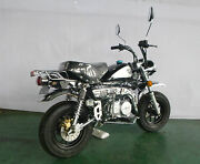 Skyteam Monkey 125cc Euro 4 Modell 2018
