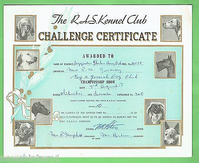 #T41. #14. 1958  RAS KENNEL CLUB DOG CHALLENGE CERTIFICATE, CHIHUAHUA