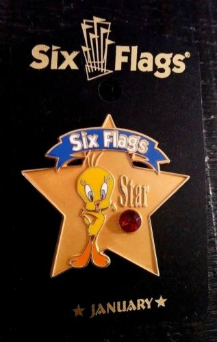 SIX FLAGS WARNER BROS TWEETY BIRD STAR BIRTHSTONE JANUARY COLLECTIBLE PIN RARE