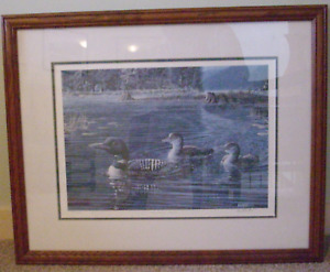 FRAMED PICTURE - HEADING HOME - LOONS