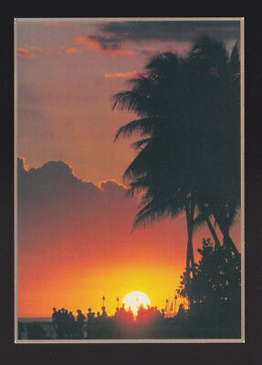 "Waikiki Sunset Onlookers watch for the ""green flash"" HI Island Heritage Postcard for sale  Vista"