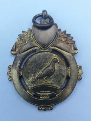 ATTRACTIVE PIGEON RACING BIRD FANCIERS VTG MEDAL or FOB BADGE