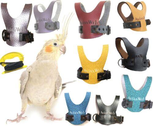 EZ Cockatiel Harness with 6 Foot Leash