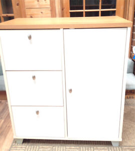 Multi-Use Free Standing  Cabinet