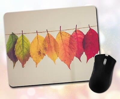 Filter Pad Fall (Nature ~ Leaves, Autumn, Rainbow, Filter, Fall, Unique ~ Vivid Mouse Pad 29)