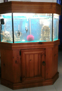 WANTED- FISH TANK Deloraine Meander Valley Preview