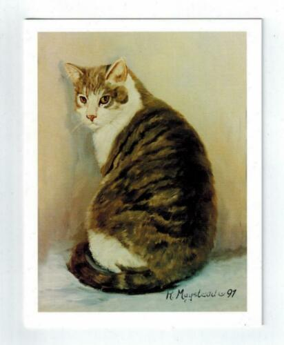 Brown & White Cat Sitting Notecards Set - 12 Note Cards By Ruth Maystead CATS-17