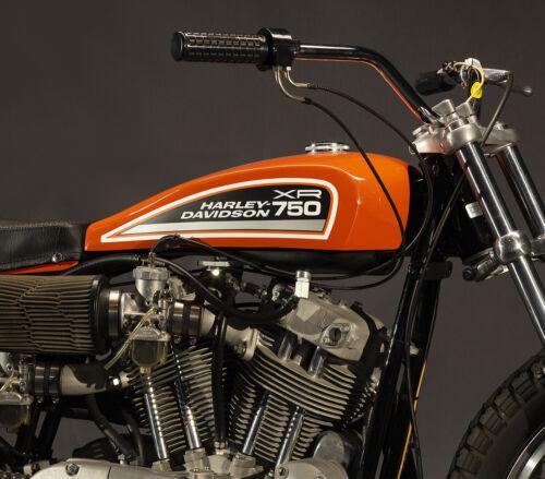 "HARLEY DAVIDSON XR-750 8x10"" PHOTO MOTORCYCLE FLAT TRACK RACING XR750 🧨"