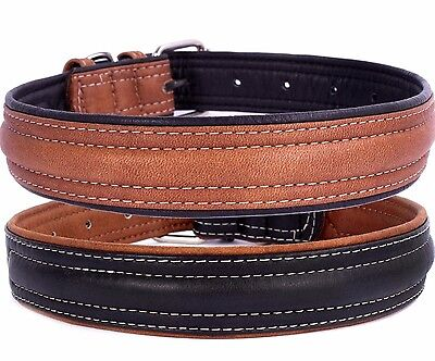 Leather Dog Collar Soft Brown Black Puppy Small Medium Large (Medium Brown Puppy)