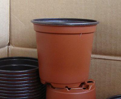 4 INCH PLASTIC FLOWER NURSERY PLANT POTS 25,50.100.300,1000](Cheap Flower Pots)