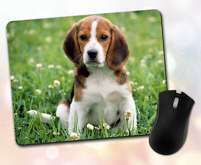 Animals ~ Dog, Beagle, Flowers, Floppy Ears, Gift, Decor ~ Vivid Mouse Pad