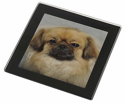 Tibetan Spaniel Dog Black Rim Glass Coaster Animal Breed Gift, AD-TS2GC